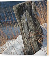 Over The Hudson  Wood Print