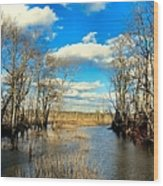 Over The Waters Wood Print