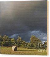 Overcast - Before Rain Wood Print by Michal Boubin