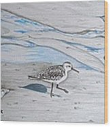 Overcast Day With Sanderlings Wood Print