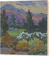 Overcast Light In Santa Barbara Wood Print
