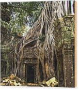 Overgrown Jungle Temple Tree  Wood Print