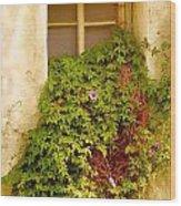 Overgrown Window Of Old Building Wood Print