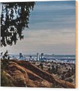 Overlooking Denver Wood Print