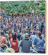 Overlooking The Asheville Drum Circle Wood Print