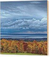 Overlooking The Bay Wood Print