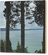 Overlooking The Ocean Wood Print