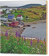 Overlooking Trinity-nl Wood Print