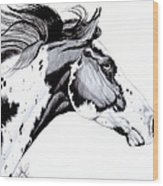 Overo Paint Horse Wood Print