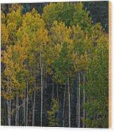 Overseers Wood Print