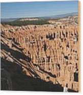 Overview At Bryce Canyon Wood Print