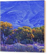 Owens Valley Fall Colors  Wood Print