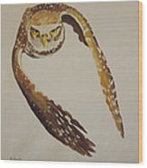 Owl Attack Wood Print