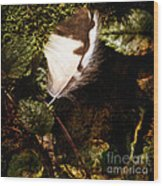 Owl Feather On Natures Canvas In Square Wood Print
