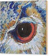 Owl Gaze Wood Print