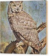 Owl On A Tree Wood Print