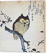 Owl On Tree Branch Wood Print