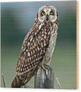 Owl See You Wood Print