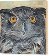 Owl Series - Owl 1 Wood Print