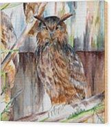 Owl Series - Owl 2 Wood Print