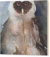 Owl Wood Print by Sherry Harradence