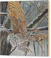 Owl Taking Off Wood Print