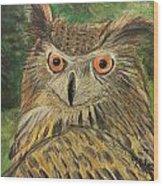 Owl With Orange Eyes Wood Print