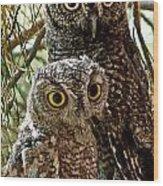 Owls From Amado Arizona Wood Print