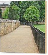 Oxford Walkway 5952 Wood Print