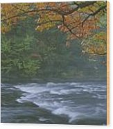 Oxtongue River Provincial Park, Dwight Wood Print