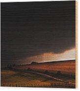 Oz In Kansas Wood Print