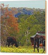 Ozark Cows Wood Print