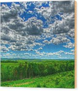 Ozark Pasture #3 Wood Print