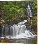 Ozone Falls Wood Print