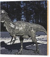 Pachycephalosaurus Wood Print