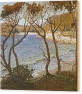 Pacific Beaches Wood Print