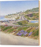 Pacific Coast Hwy Del Mar Wood Print by Mary Helmreich
