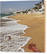 Pacific Coast Of Mexico Wood Print