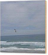 Pacific Coast Flight Wood Print