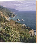 Pacific Coastline At Big Sur Wood Print by George Oze