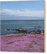 Pacific Grove California Wood Print