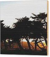 Pacific Grove Golf Links 19902 Wood Print