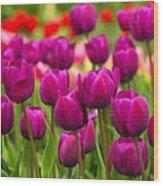 Pacific Northwest Tulips 4 Wood Print