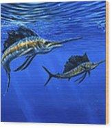 Pacific Sailfish Wood Print