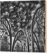 Pacific Science Center - Seattle Washington Wood Print