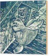 Pacific Sea Lions Wood Print