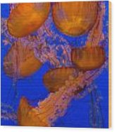 Pacific Sea Nettle Cluster 2 Wood Print