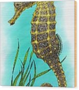 Pacific Seahorse Wood Print