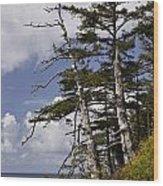 Pacific West Coast Trees Wood Print