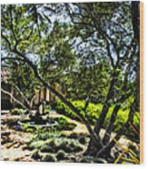 Pacifica Courtyard Wood Print